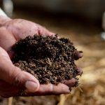 Producción Orgánica – Nuestra Promesa Sostenible