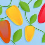 Los mini pimientos dulces de Divine Flavor: Los mejores snacks