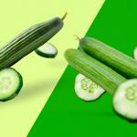 Product Spotlight:  ¡La temporada de pepinos en Sinaloa inició! Pimientos, en camino