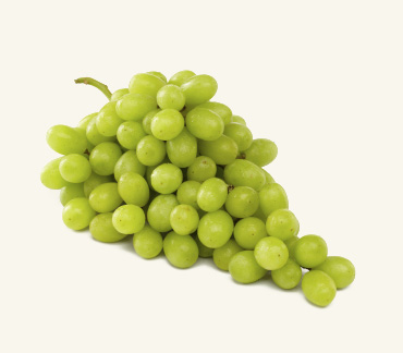 Green grapes images galleries with a for Table grapes